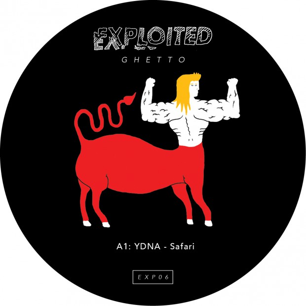 EXP06_YDNA_Safari